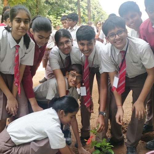 Environment Day Celebrations 2019-20