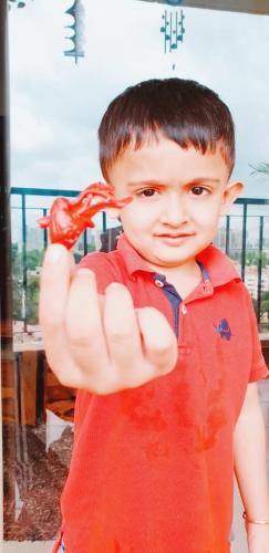 LKG Red Day Celebration-Avyukth